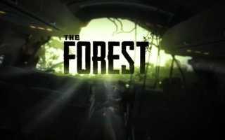 Как в The Forest пить воду