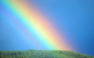 В какое время года бывает радуга
