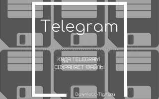 Где хранятся скаченные файлы из телеграмма