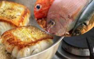 Какая рыба самая вкусная для жарки
