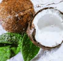 Как выбрать вкусный кокос