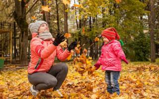 Почему с деревьев опадают листья осенью