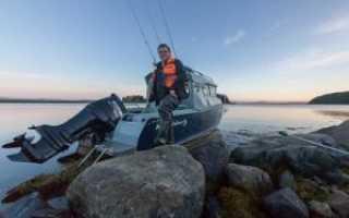 Какие виды рыб водятся в Белом море