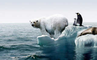 Существует ли глобальное потепление