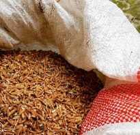 Чем полезен коричневый рис