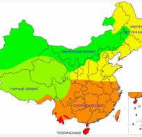 Какая зима в Китае