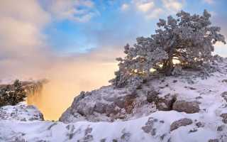 Куда поехать в Крым зимой