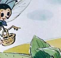 Зачем мухи трут лапки
