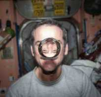 Почему в космосе невесомость